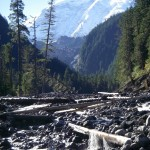 Mt. Rainier's Carbon River