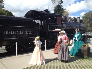 Renactors at Civil War Train at Mt Rainier Railroad and Logging Museum