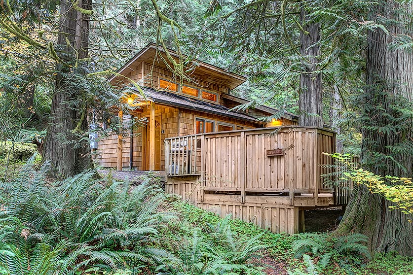 Deep Forest Cabins Visit Rainier