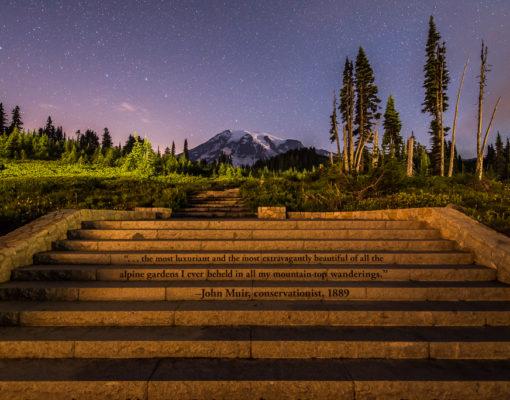 Steps at Paradise