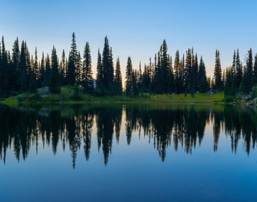 Sheep Lake reflections