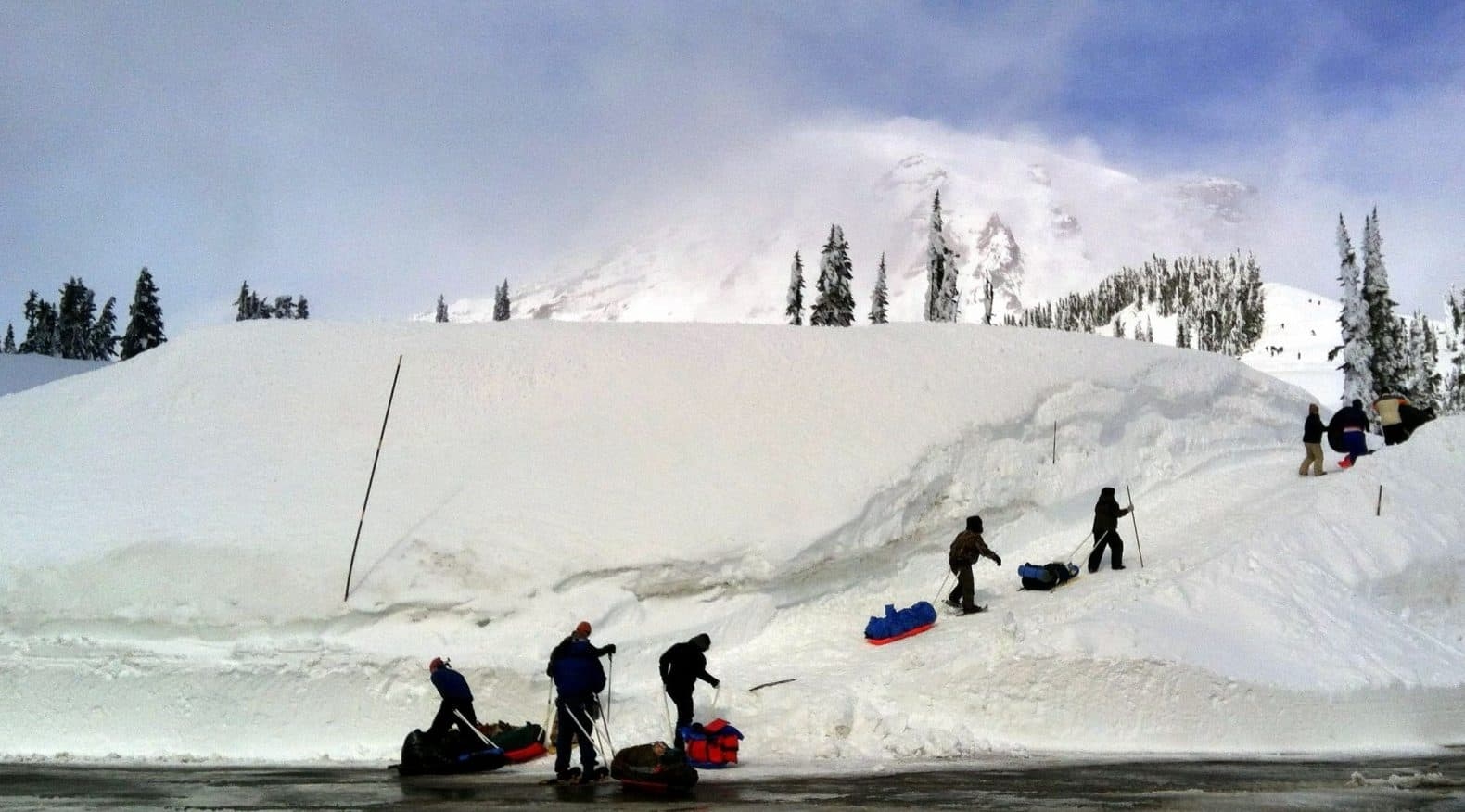 Sledders heading uphill at Paradise Snowplay at Mount Rainier