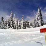 Snow Play Area in Mt. Rainier National Park