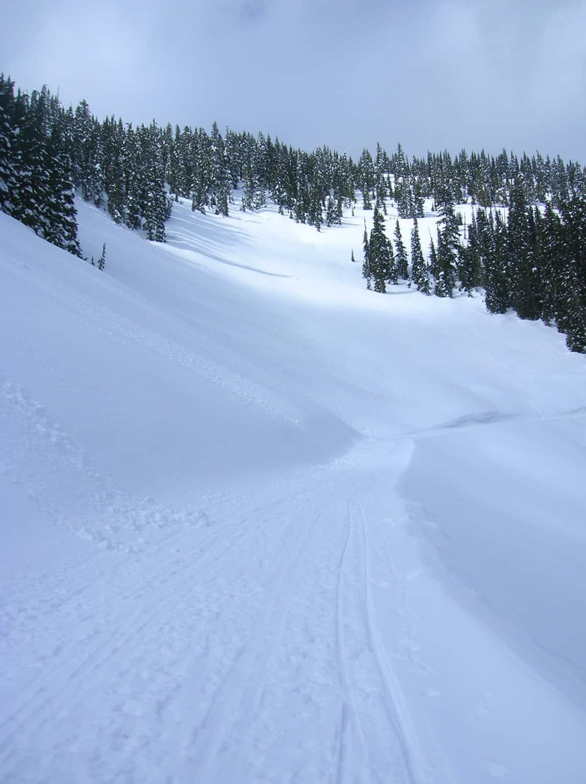 white pass nordic center | visit rainier