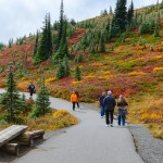 Hikers along a path with fall colors