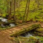Wooden bridge on Palisades Trail (Hwy 410)