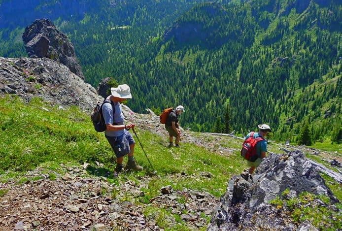 Noble Knob Trail