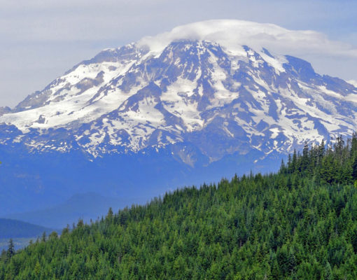 Rainier dominates the view looking northeast