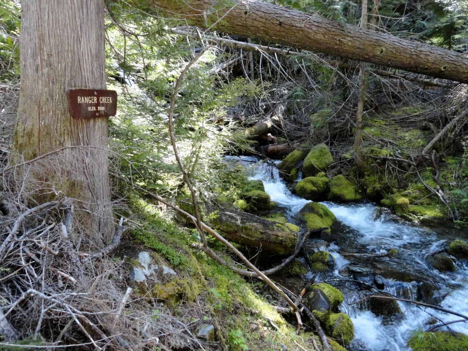Ranger Creek Trail