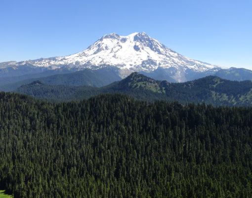 View of Mount Rainier as seen from Mount Beljica
