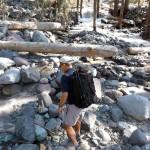 Emerald Ridge / Tahoma Creek