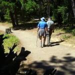 Boulder Cave Natural Area