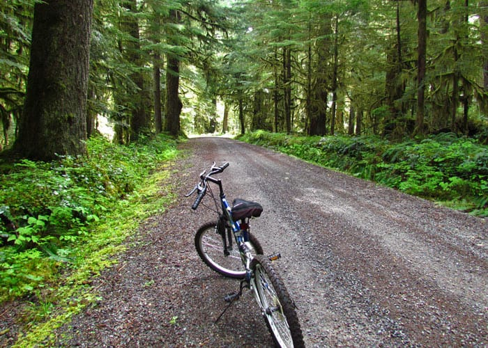 bike the carbon river road