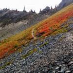 Placer Lake via Morse Creek Road