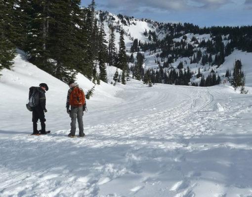 Mazama Ridge Snowshoe