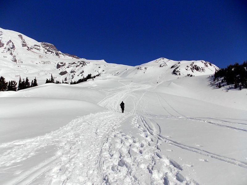 Lyric crystal mountain lyrics : Panorama Point Snowshoe | Visit Rainier