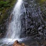 Martha Falls via the Wonderland Trail