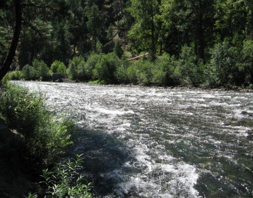 Naches River Fishing