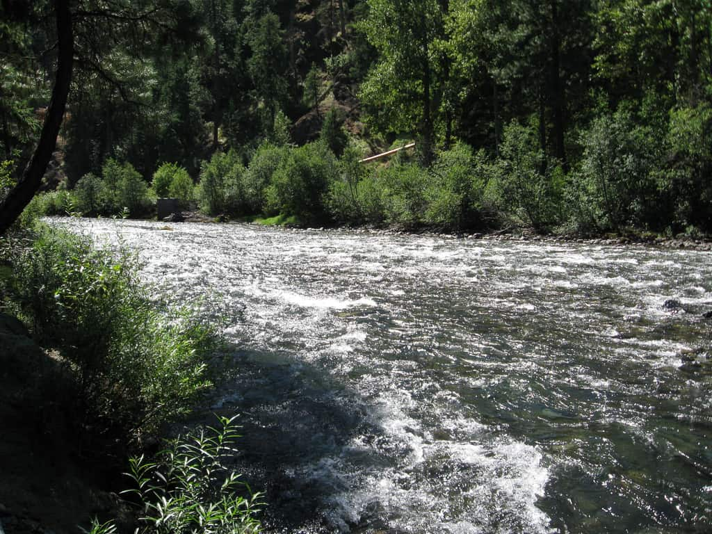 Naches River Fishing
