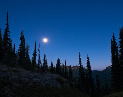 Moon shining during dusk over trees and mountains
