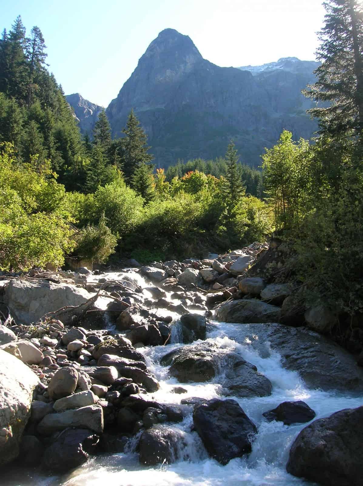 North fork puyallup river visit rainier for Puyallup river fishing
