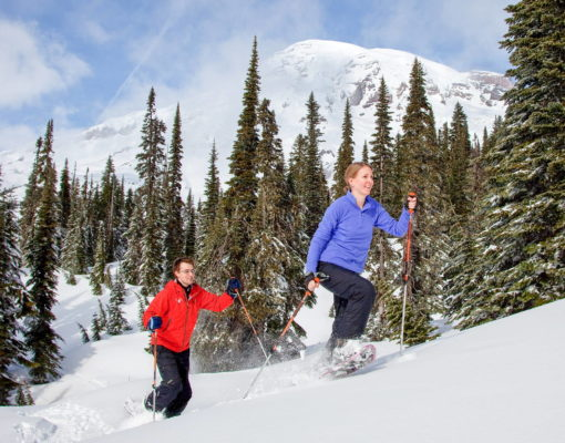 A couple snowshoeing uphill with poles