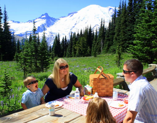 Picnic Areas at Mount Rainier