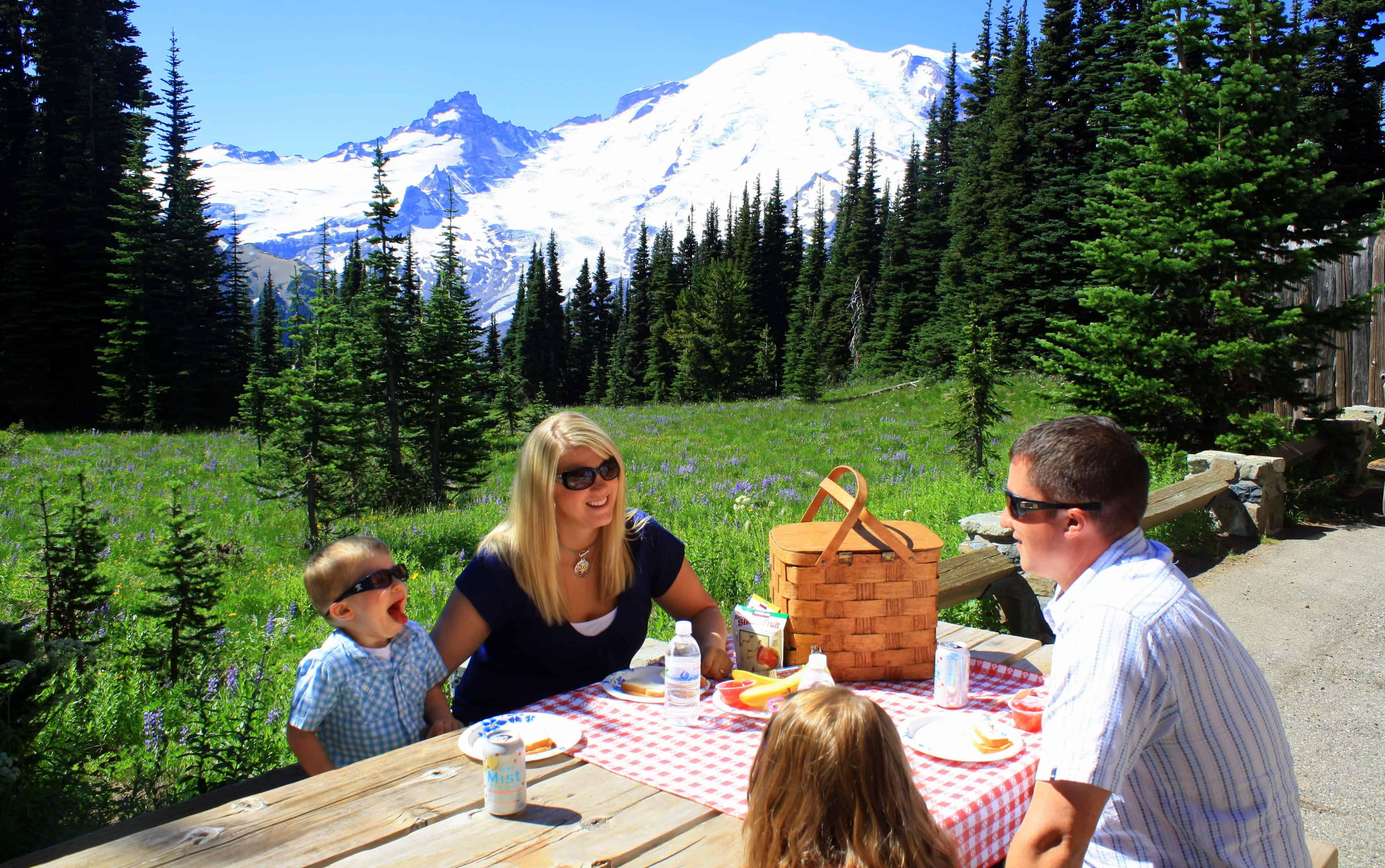 Picnic Areas at Mount Rainier