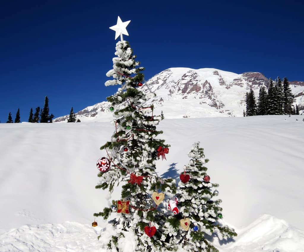 Welcome Winter Holidays at Mt. Rainier | Visit Rainier