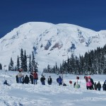 Group of People Sledding at Mt. Rainier National Park