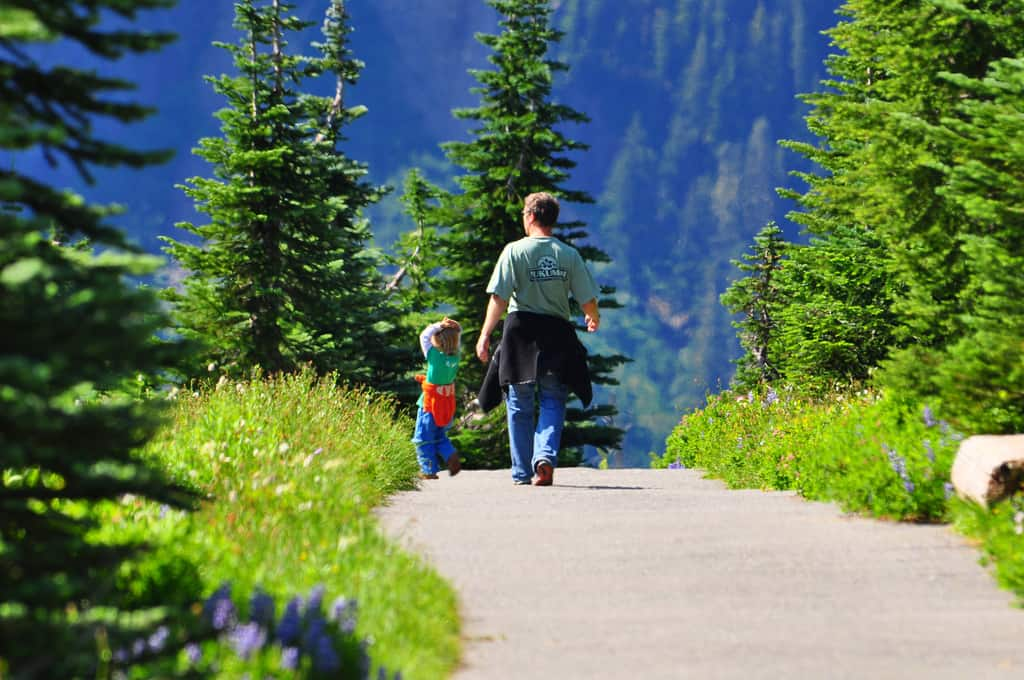Lyric crystal mountain lyrics : Father and Daughter on Alta Vista Trail | Visit Rainier
