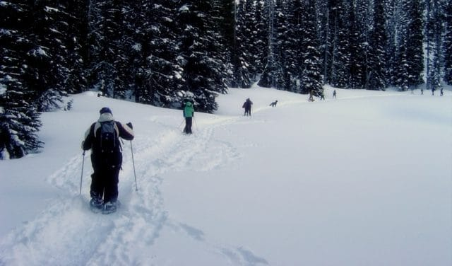 A group of people on a Snowshoe Tour