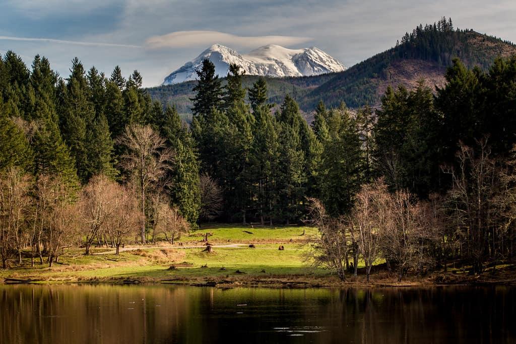 Horseshoe Lake and Mount Rainier as seen from Northwest Trek Wildlife Park