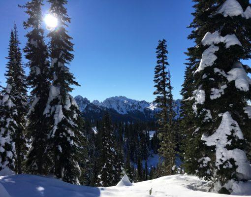 Ranger Guided Snowshoe Trip