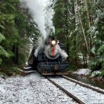 Mt Rainier Railroad Steam Train