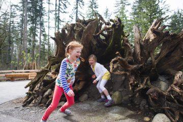 Kids playing at Kids Trek at Northwest Trek Wildlife Park