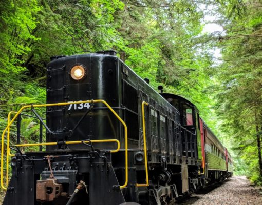 Train at Mt. Rainier Railroad