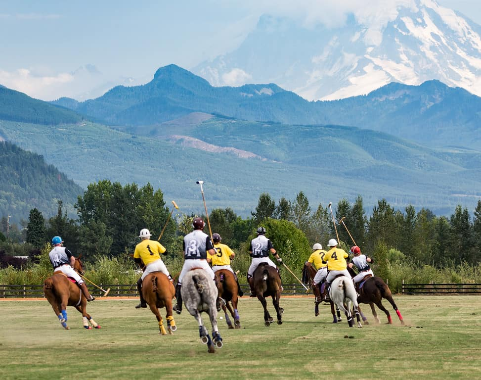 Seattle Polo Party Action Shot with Mount Rainier Courtesy Dan DeVries Photography