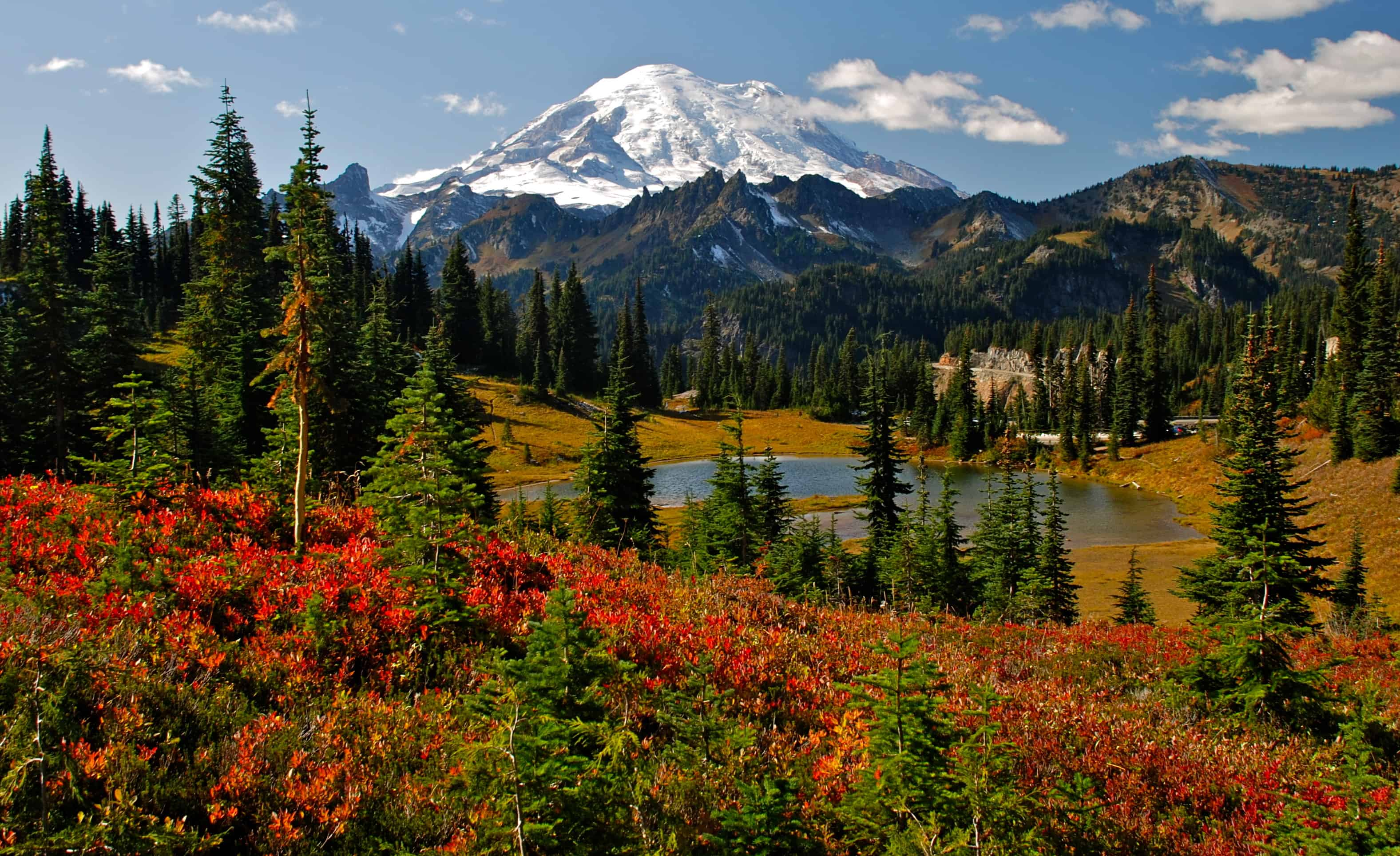 Mount Rainier Fall Colors Photo Courtesy Mike Peters