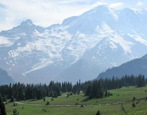 Sourdough Ridge Trail. Photo Courtesy Janelle Walker