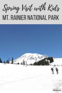 Mt Rainier Springtime