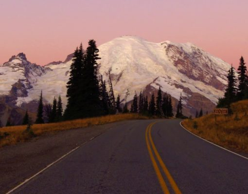 View of Mount Rainier from Sunrise Point