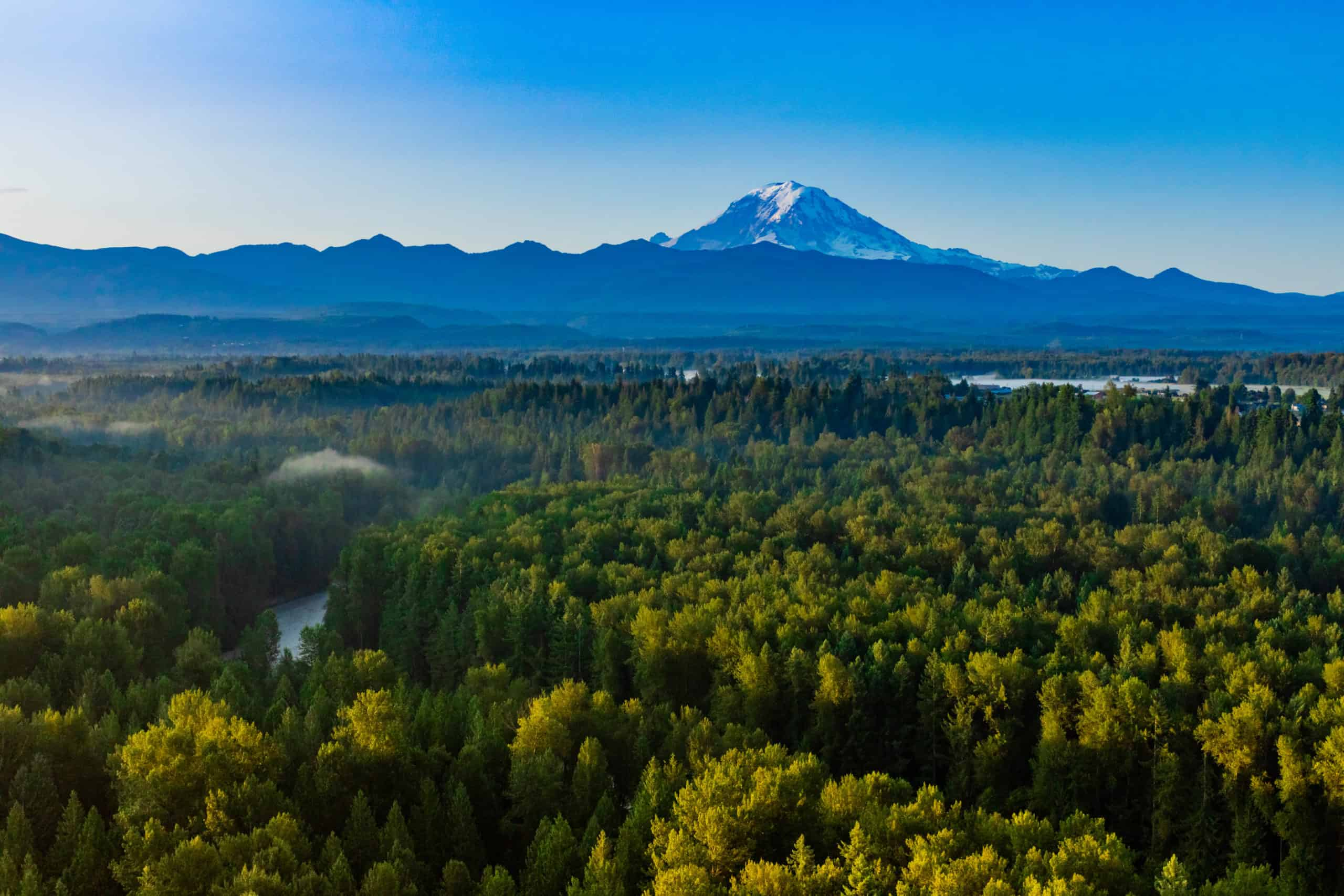 Mt. Rainier from hot air balloon