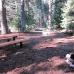 Cougar Flat Campground