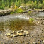 River at Cougar Flat Campground