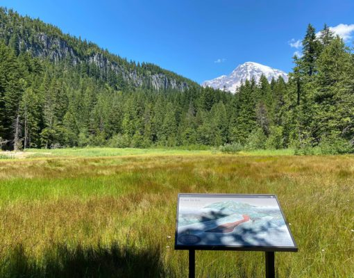 Meadow and view of Mount Rainier as seen from the Trail of the Shadows