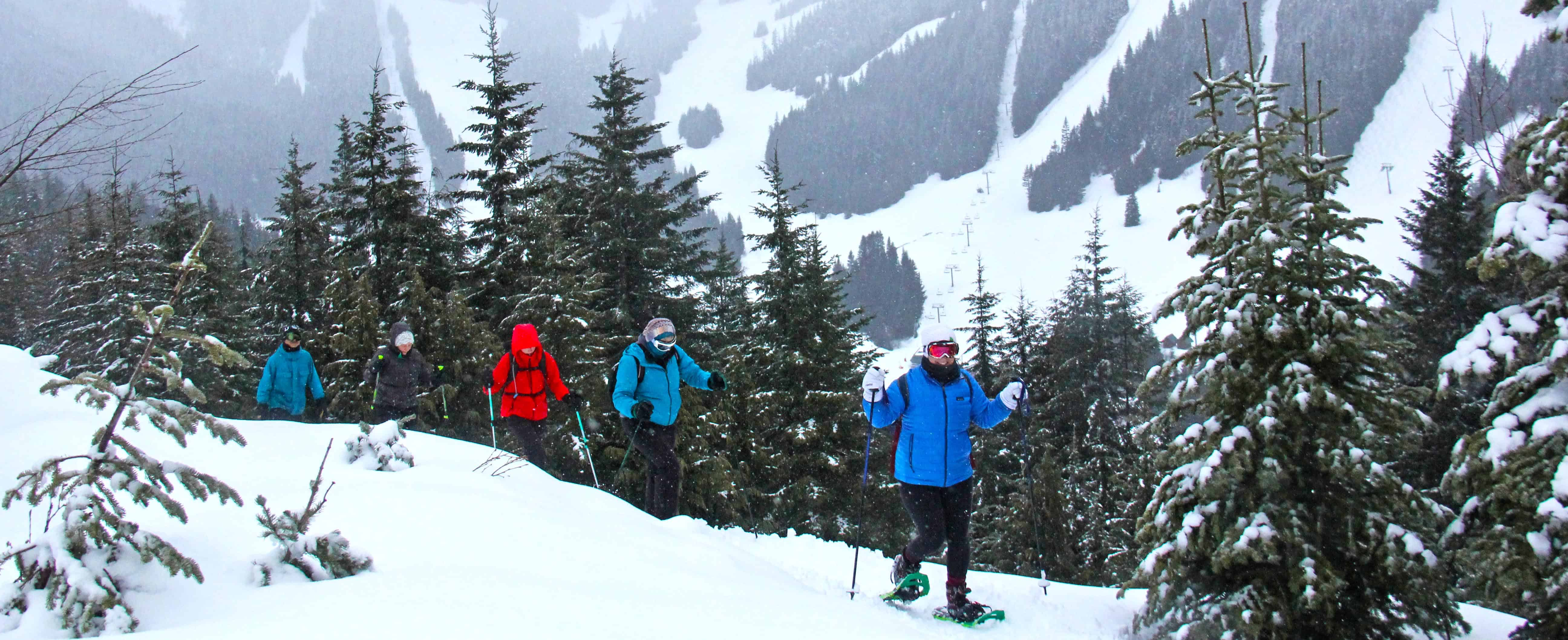 Guided Snowshoe