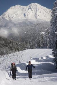 Mt Tahoma Trails