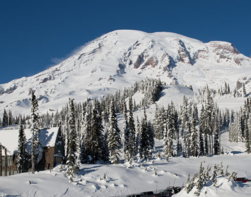 Mount Rainier covered with snow in the Winter