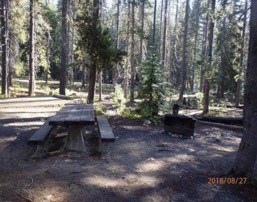 Campsite at Lodgepole Campground